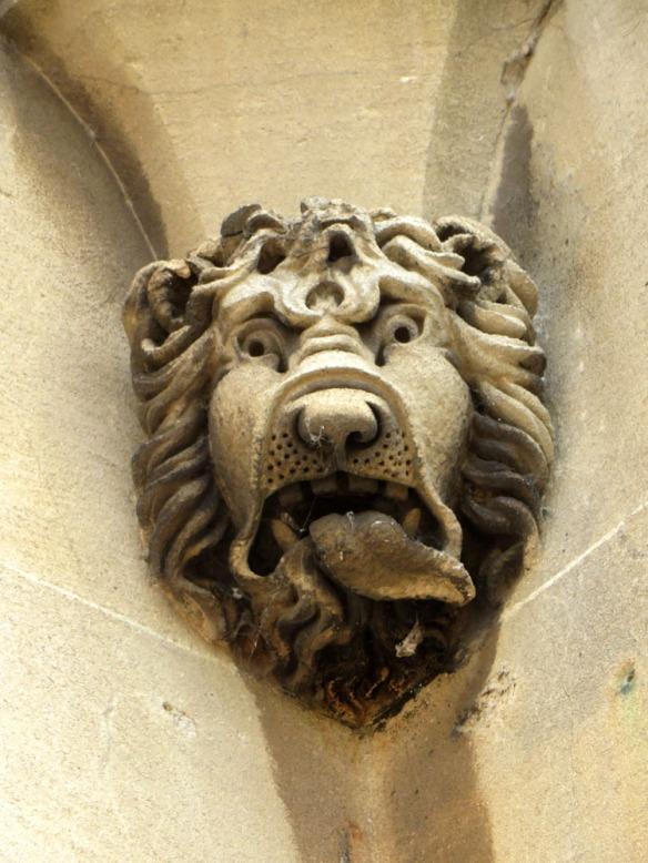 lionWC